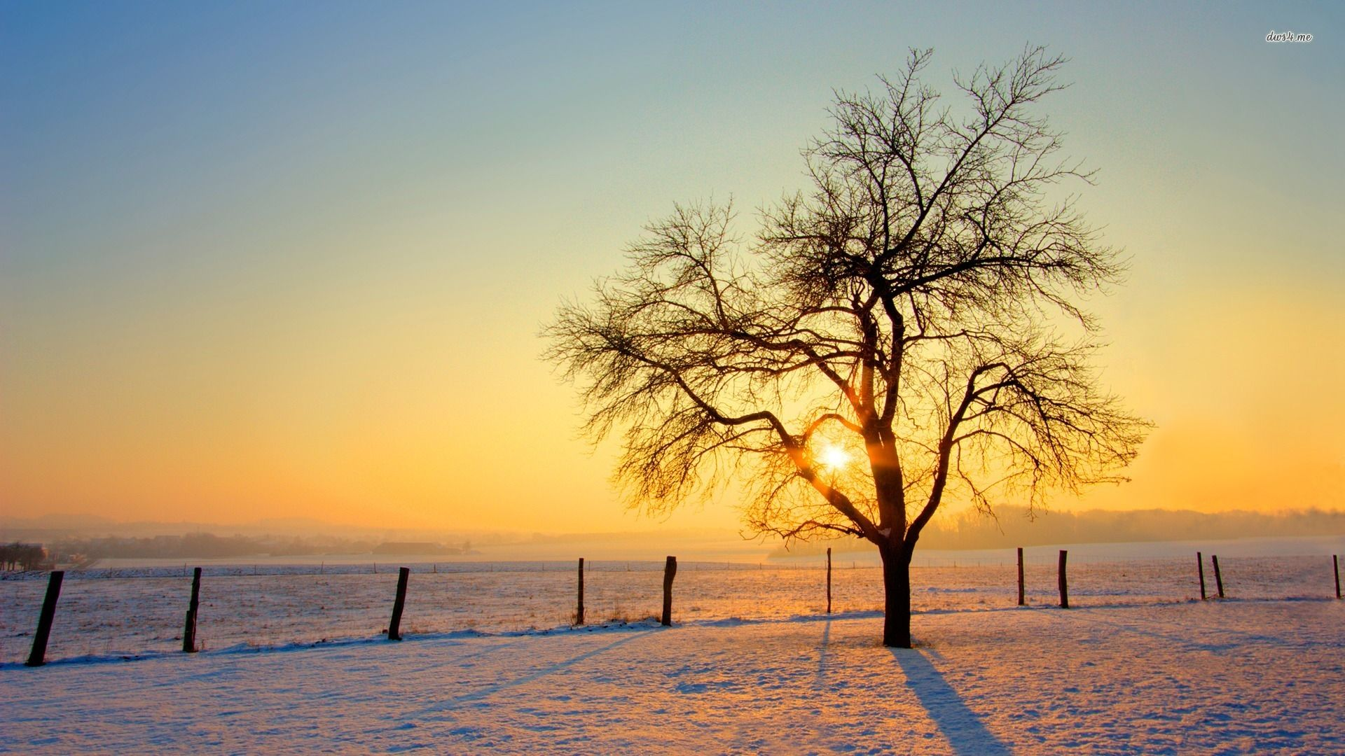 2545-winter-landscape-1920x1080-nature-wallpaper.jpg