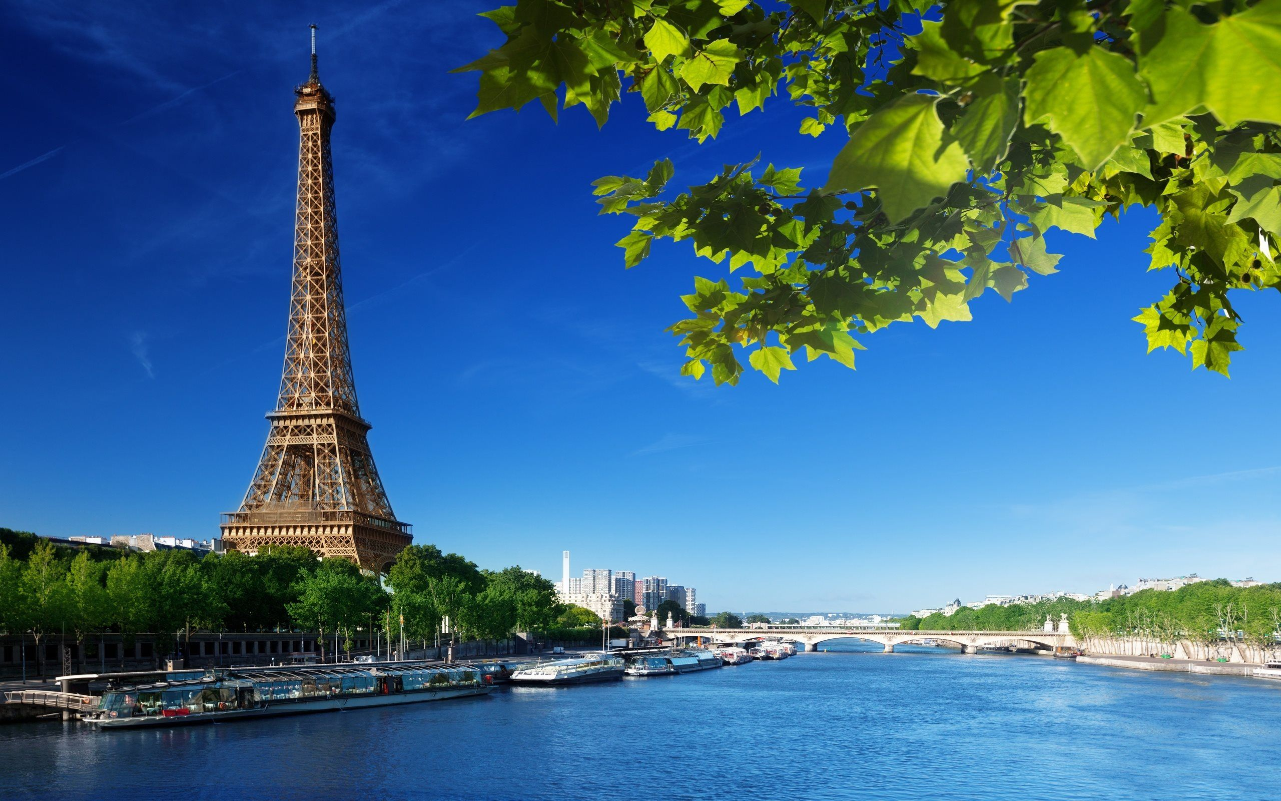 Tour-Eiffel-and-Seine.jpg